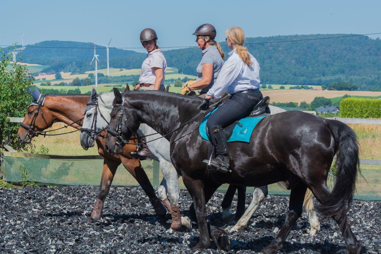 entspannte Stimmung, zufriedenes Pferd